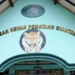 Taman Hewan Siantar, Siantar Zoo