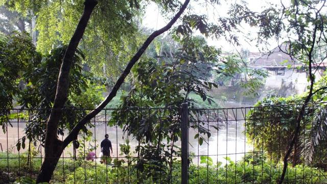 Taman Beringin, Hutan di Tengah Kota Medan