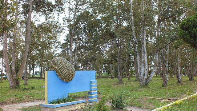 Pohon durian paling banyak di Taman Buah Lubuk Pakam