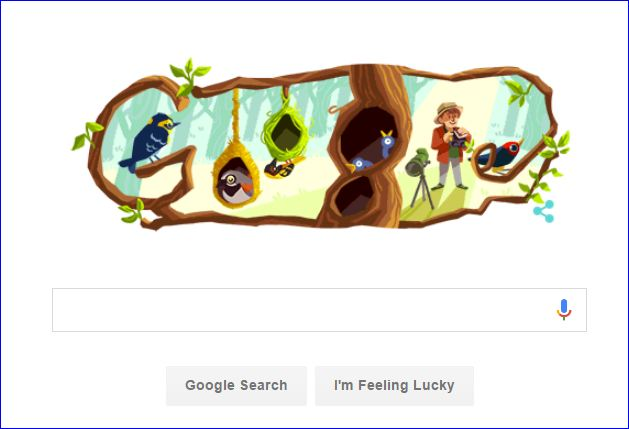 Phoebe Snetsinger Jadi Google Doodle Hari Ini