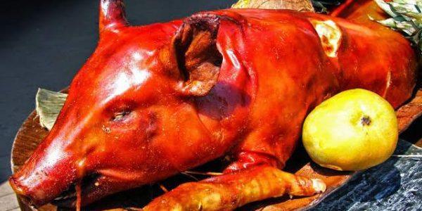 Daging Babi Haram Bagi Muslim dan Untuk Apa Babi Diciptakan?