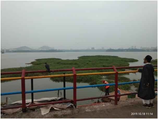 Suatu Pagi di Danau Mumbai India